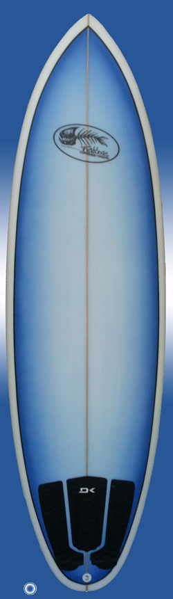 evo surfboard by fishbone guadeloupe